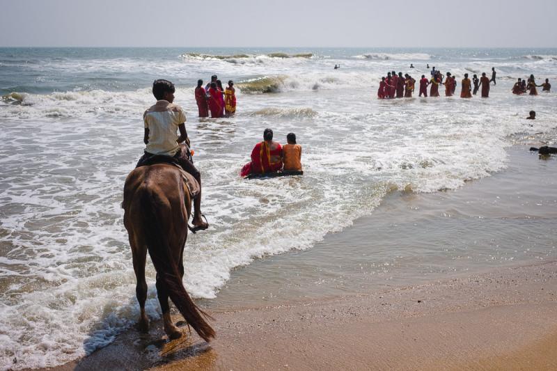 Mahabalipuram Horse