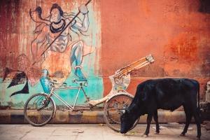 Shiva's Bicycle